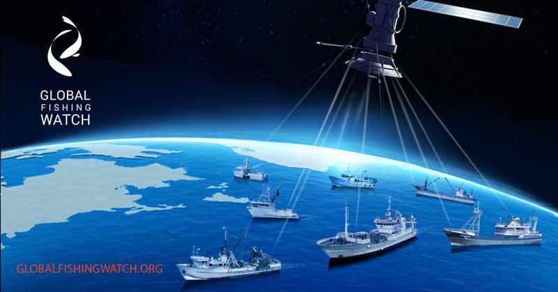 Bjorn Bergman expone funciones y ventajas de Global Fishing Watch